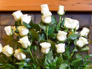 Pie de urna . rosas blancas en laton