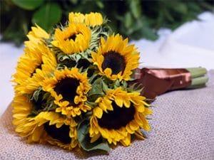 Ramos de flores de girasoles