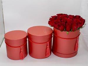 Rosas Rojas en sombrerera