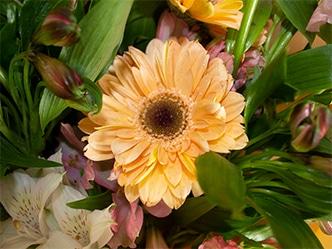 Ramo-de-flores astromelia gerbera lilium y lisianthus 1_2