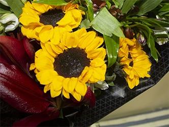 Girasoles, como la flor perfecta para regalar por si sola o acompañada.